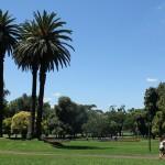 Melbourne: Park mit Palmen und Blumen