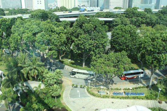 Singapur - Straße mit Palmen