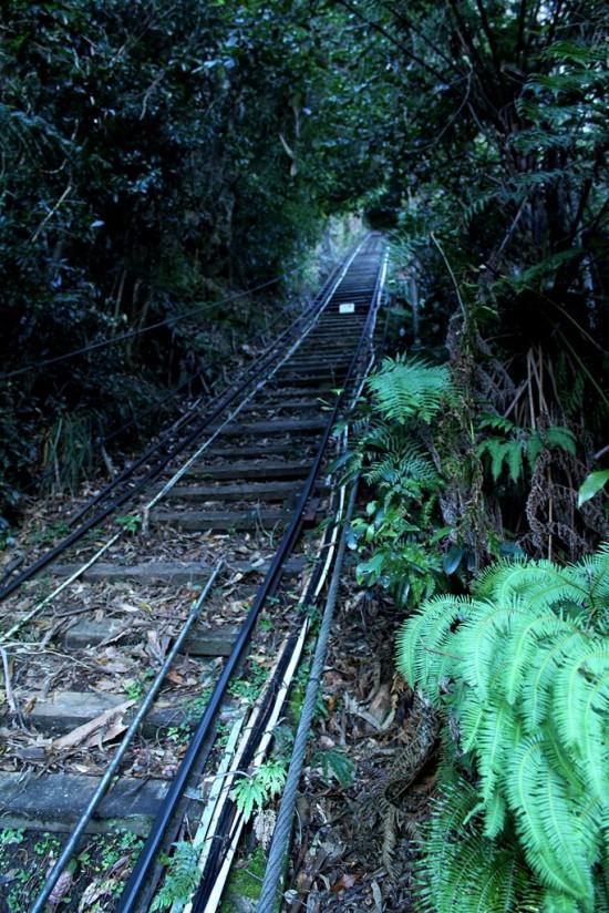 Blue Mountains 05 - Scenic Railway - Steilste Eisenbahn der Welt - IMG_1339-2