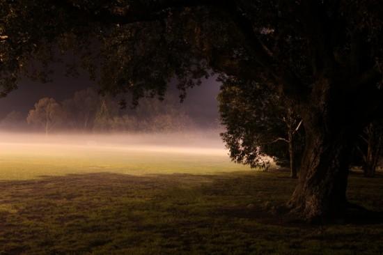 Australische Nacht - Fußballfeld im Nebel - IMG_2731-4