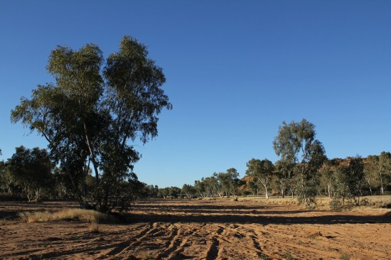 Alice Springs - Dry Todd River Bed - IMG_4178