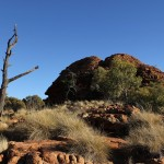 Outback 07 - Trockene Landschaft am Kings Canyon Rim Walk - IMG_5233
