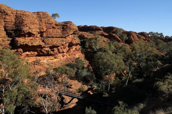 Outback - Brücke über Kings Canyon - IMG_5350