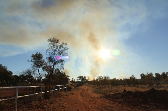 Outback - Buschfeuer - IMG_5036