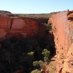 Outback - Kessel um das Wasserloch des Kings Canyon - IMG_5432-2