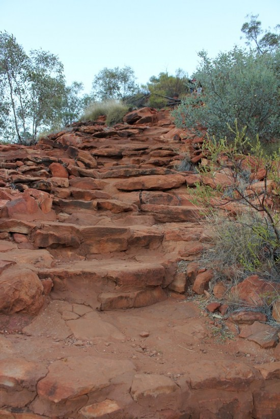 Outback - Kings Canyon Rim Walk - Heartattack Hill - IMG_5132