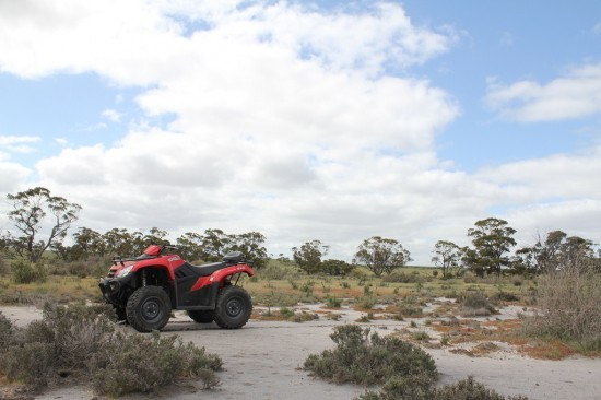 Off-roading The Block - Quad in the wild - IMG_6277